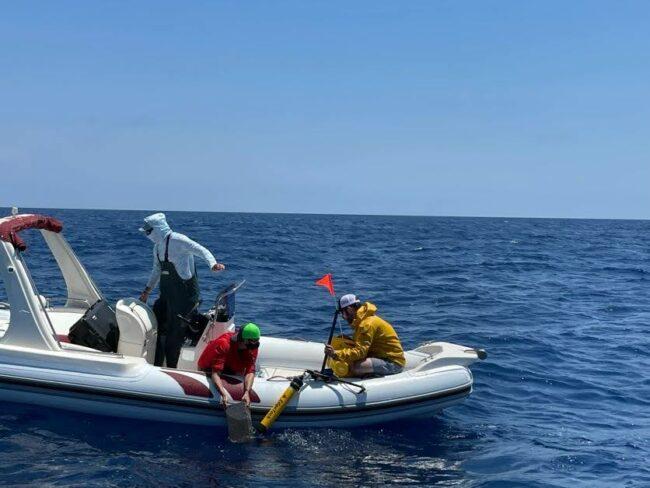 missione-squalo-bianco-1-650x488