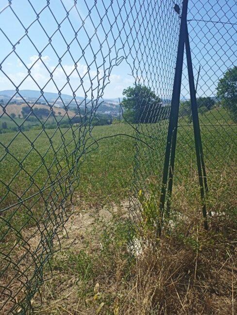 la-recinzione-rapina-tolentino