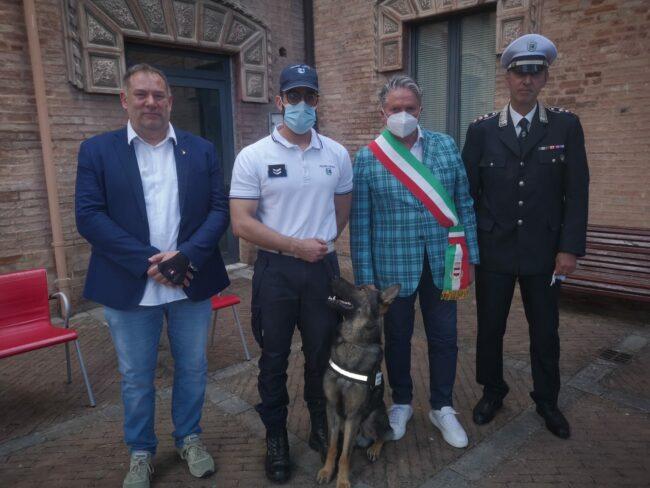 pezzanesi_polizia_municipale_cane_billy-3-650x488
