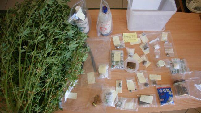 arresto-marijuana-Tolentino-2-650x366