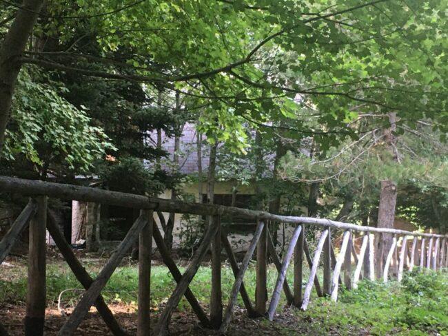 La-casa-di-Sandro-Polzinetti