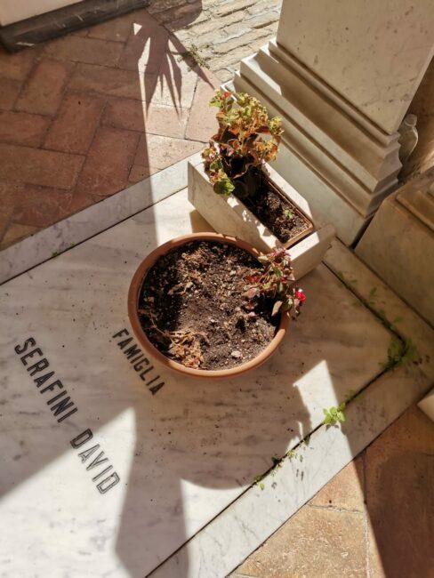 macerata_cimitero_cervigni-3-488x650