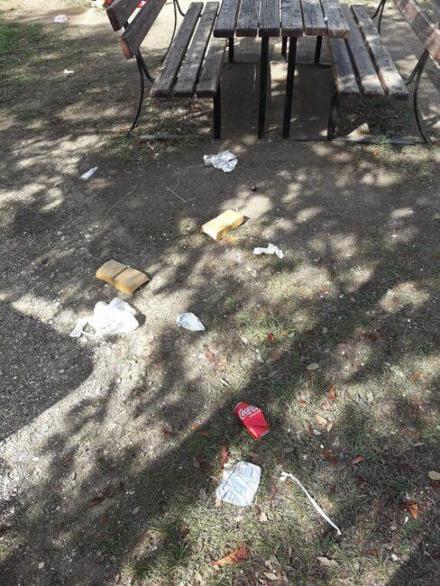 rifiuti-giardini-diaz