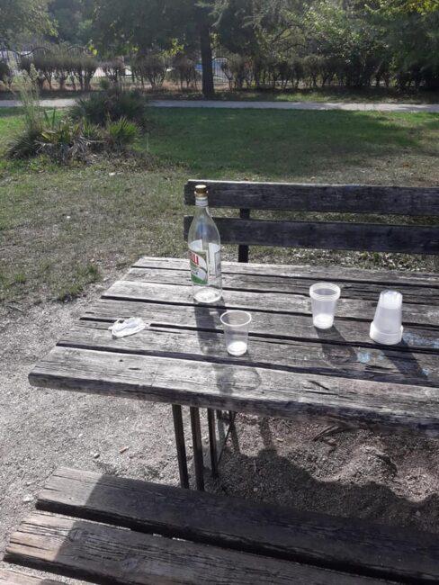 rifiuti-giardini-diaz4-488x650