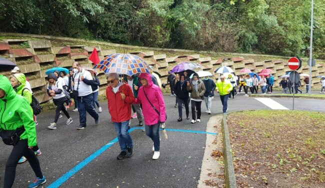 rotary-passeggiata-Walking-for-the-cure-2-4-650x376