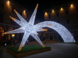 stella-5-325x244